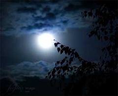 nacht_ziel